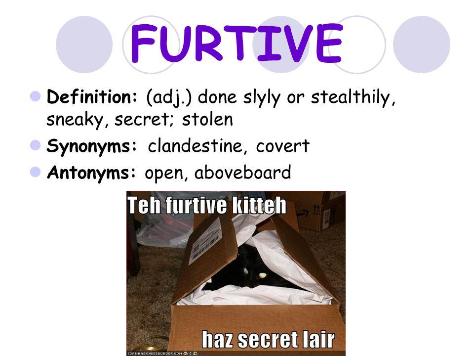 12 FURTIVE ...