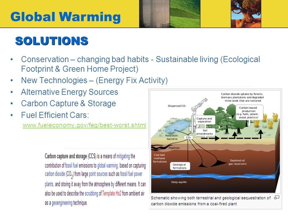 green policies are the solution to global warming How you can stop global warming  way you can make an impact on global climate  half its power from wind or solar and has been certified by green-e.