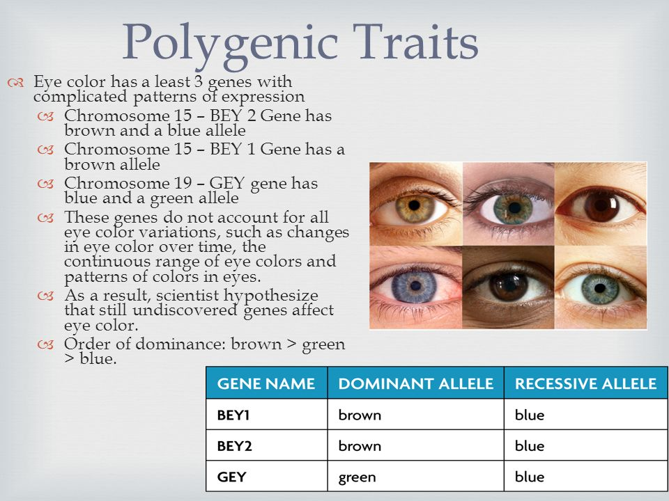 Polygenic Traits Eye color has a least 3 genes with complicated patterns of  expression. Chromosome