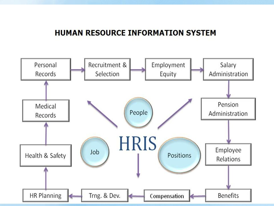 Human Resources Information System Hris Ppt Video