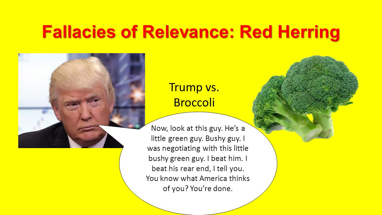 red herring fallacy This video is an example of the red herring fallacy because it uses completely irrelevant appeals that distract the viewer from the main issue: buying the lamp.