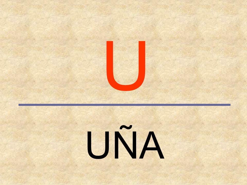 U UÑA