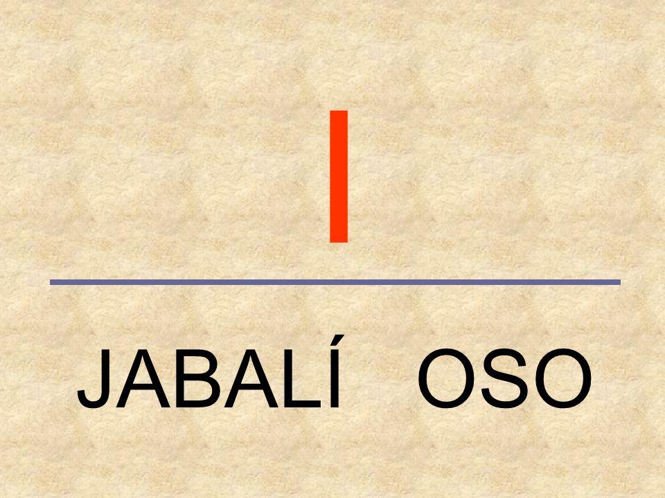 I JABALÍ OSO