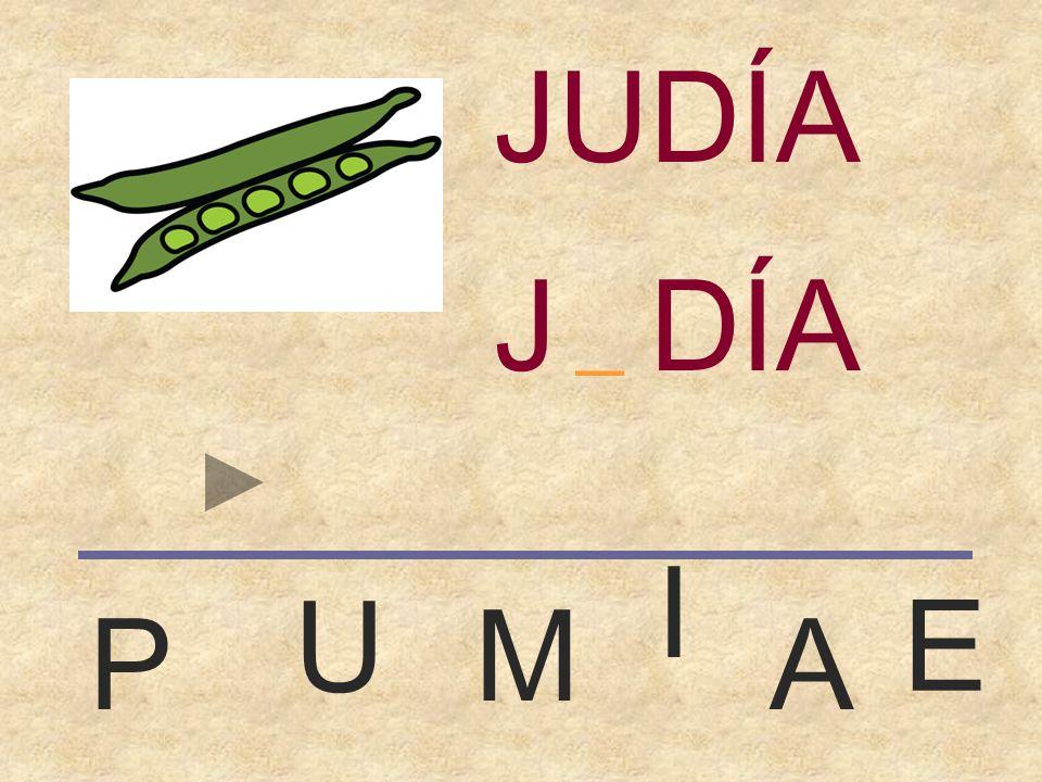 JUDÍA JUDÍA _ I U E M P A