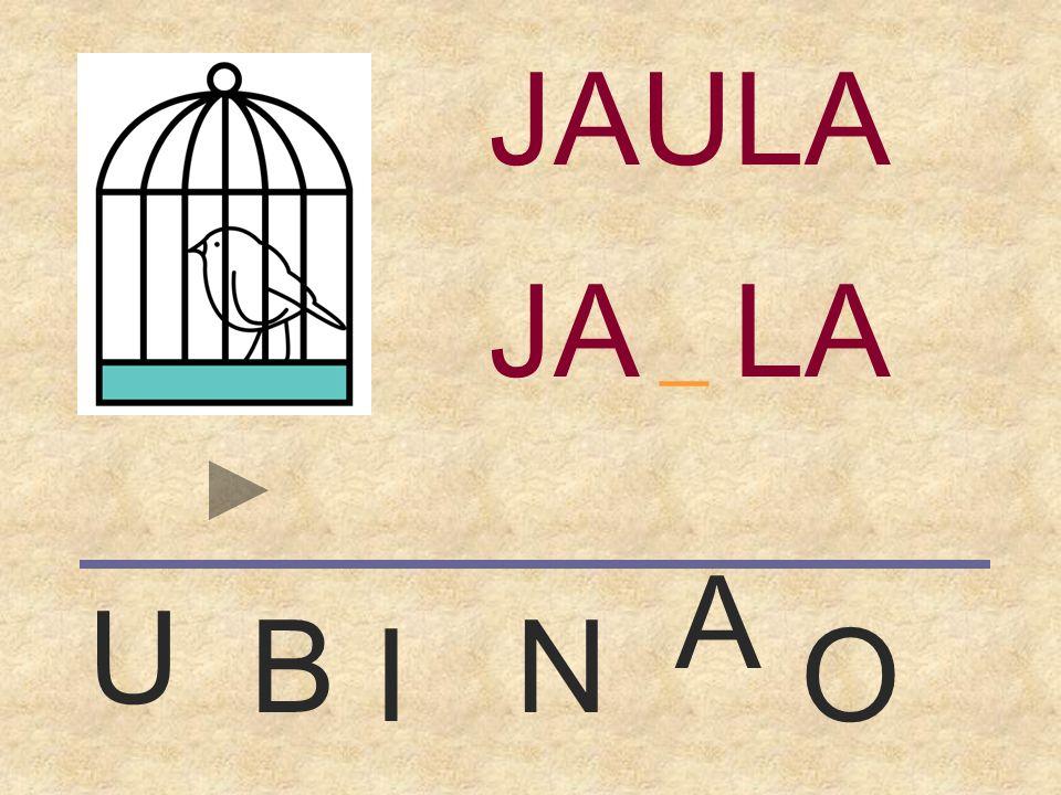JAULA _ JAULA A U B N I O
