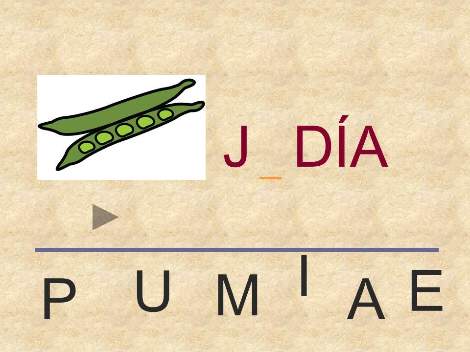 JUDÍA _ I U E M P A
