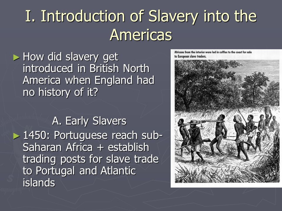 6c. The Growth of Slavery