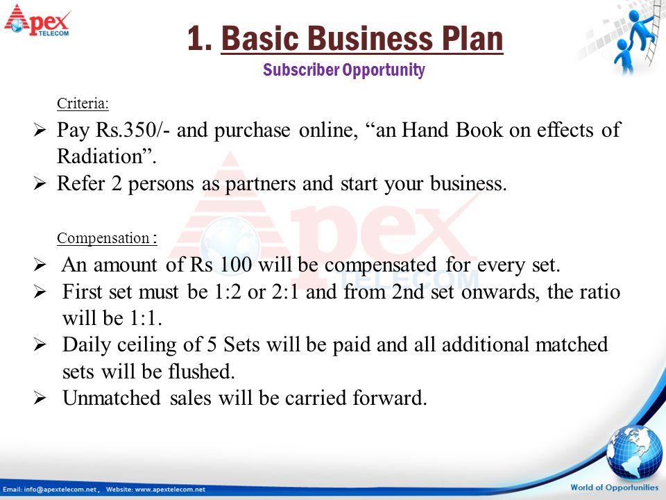 basic business plan