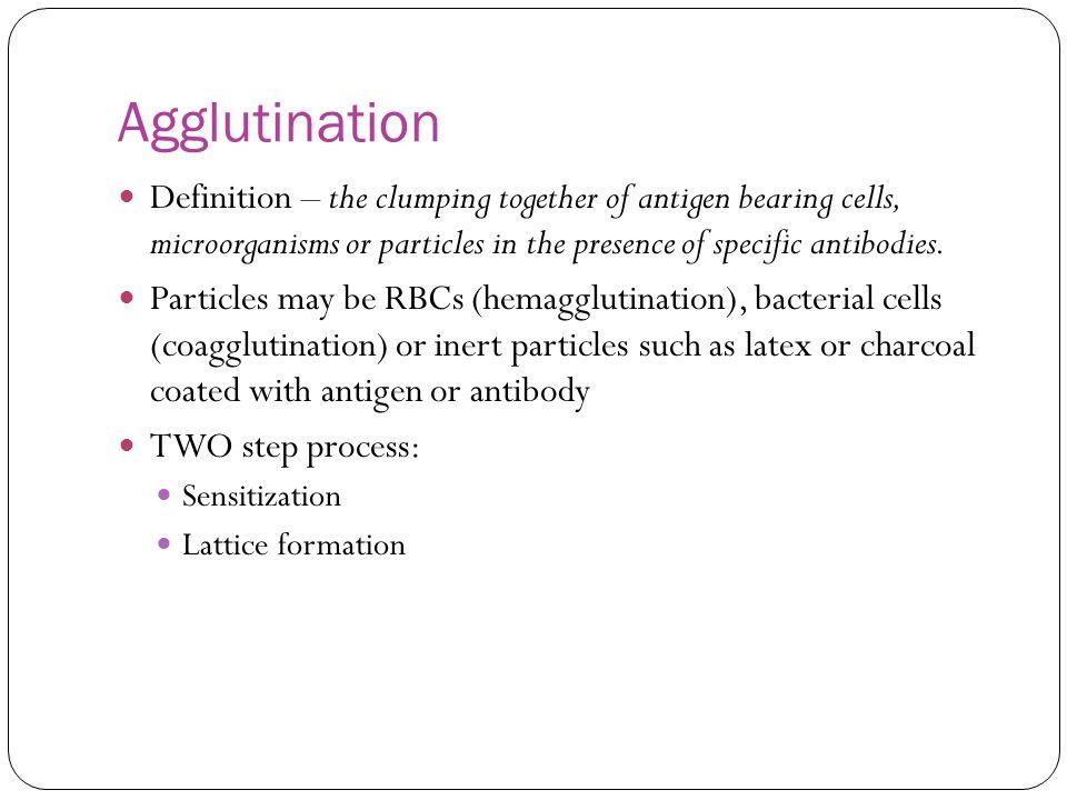 agglutination