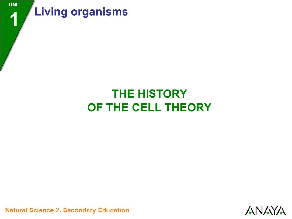 history of the cell theory Quiz over the development of the cell theory focusing on scientists of the time  such as hooke, virchow, schleiden, and schwann.