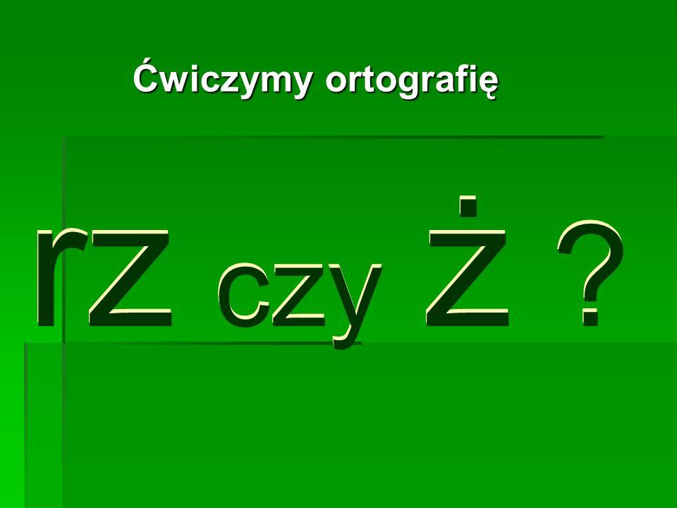 Ćwiczymy ortografię rz czy ż