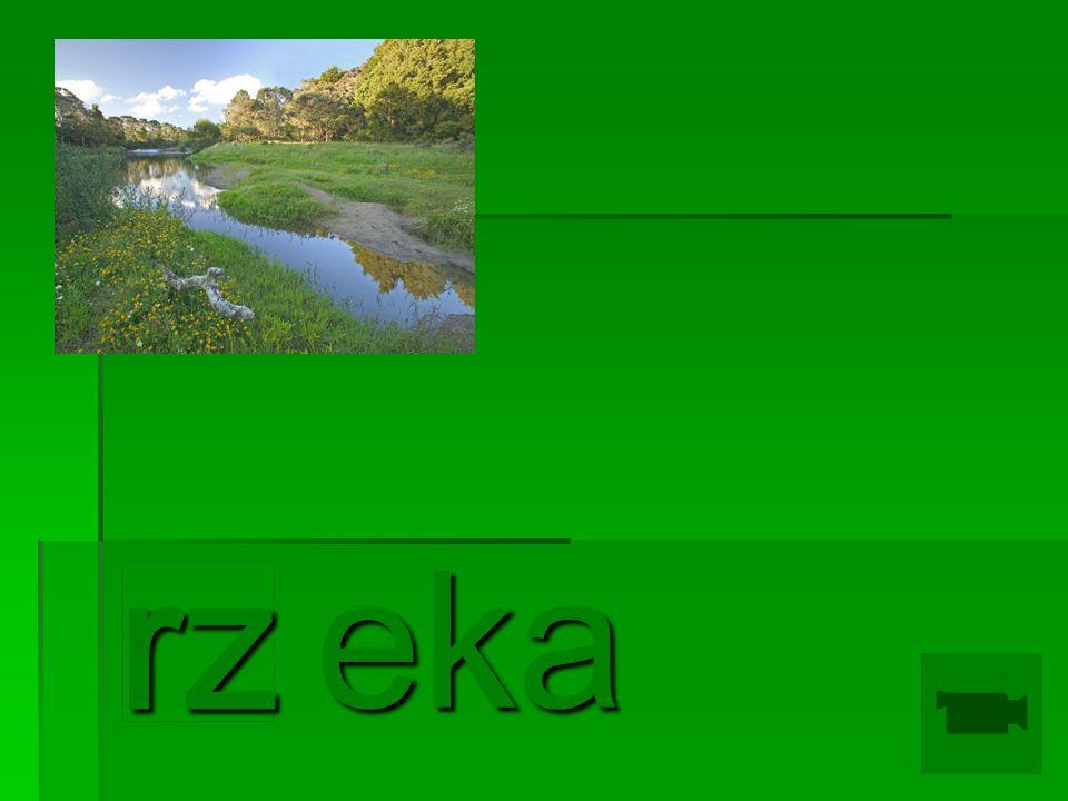 eka rz