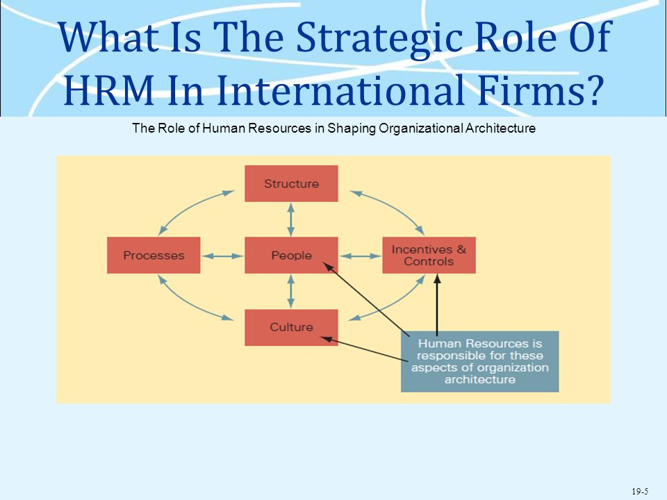 role of it in hrm Given the unlimited uses of technology, it is used in almost every department in an organization when it comes to human resource, technology helps in the all process.