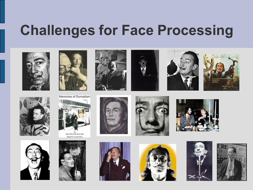 Challenges for Face Processing