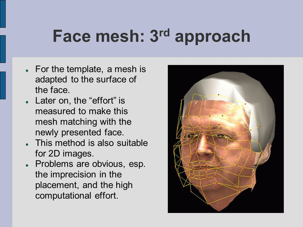 Face mesh: 3rd approach For the template, a mesh is adapted to the surface of the face.