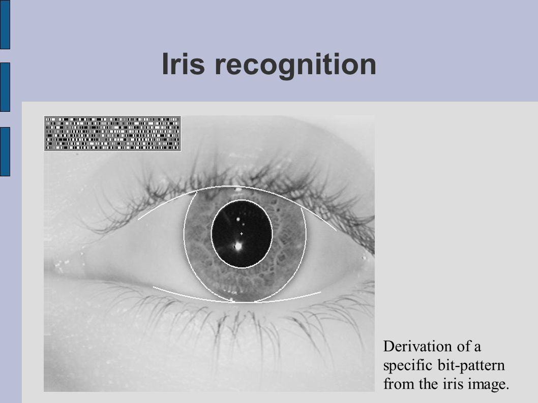 Iris recognition Derivation of a specific bit-pattern from the iris image.