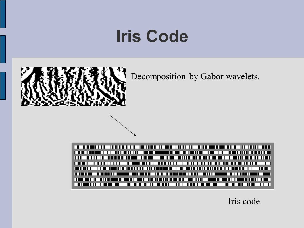 Iris Code Decomposition by Gabor wavelets. Iris code.