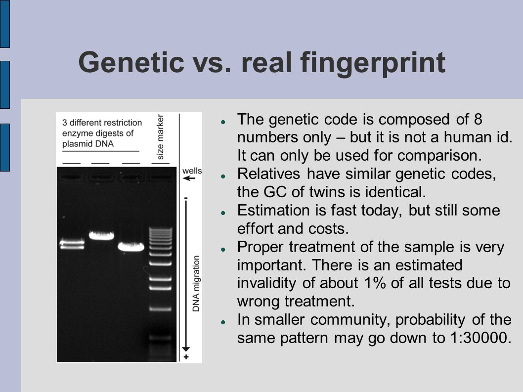 Genetic vs. real fingerprint