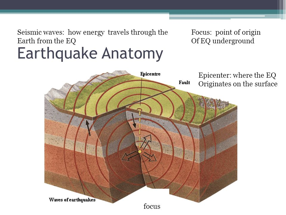 earthquakes and seismic waves An earthquake is the result of a sudden release of stored energy in the earth's crust that creates seismic waves earthquakes are accordingly measured with a seismometer, commonly known as a seismograph.