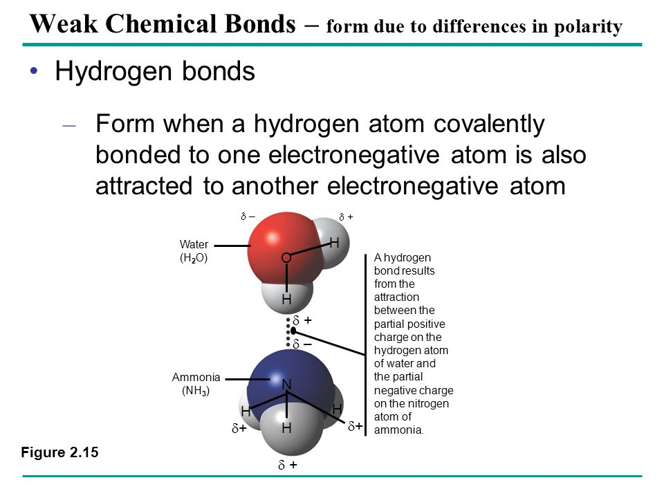 Covalent bonds – where electrons are shared - ppt video online ...