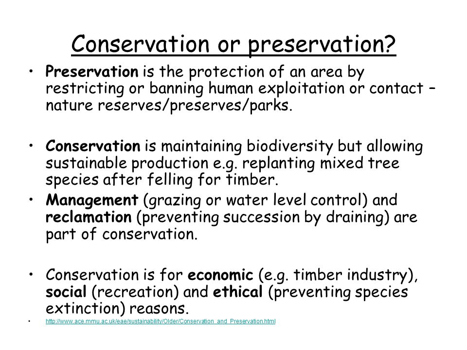 preservation and conservation of environment essay Conservation and preservation this essay conservation and preservation and other 64,000+ term papers, college essay examples and free essays are available now on reviewessayscom autor: review • february 25, 2011 • essay • 412 words (2 pages) • 491 views.