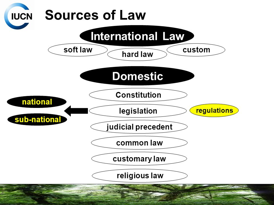 customs as a source of law Sources of law are the origins of laws, the binding rules that enable any state to govern its territory the term source of law may sometimes refer to the sovereign or to the seat of power from which the law derives its validity.