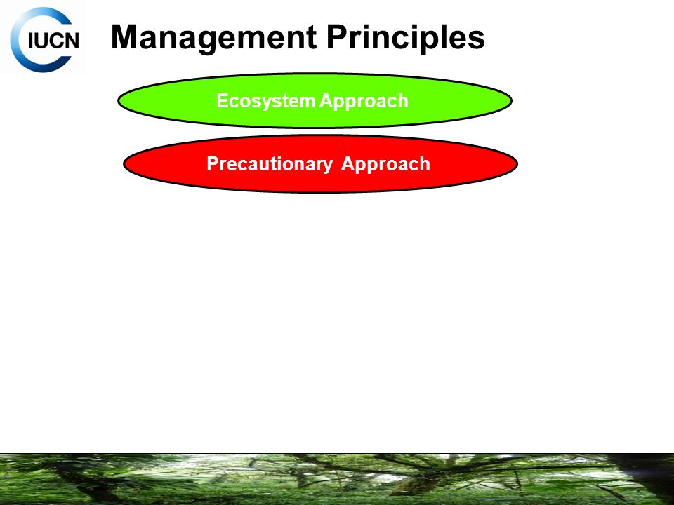 principles of management pdf notes