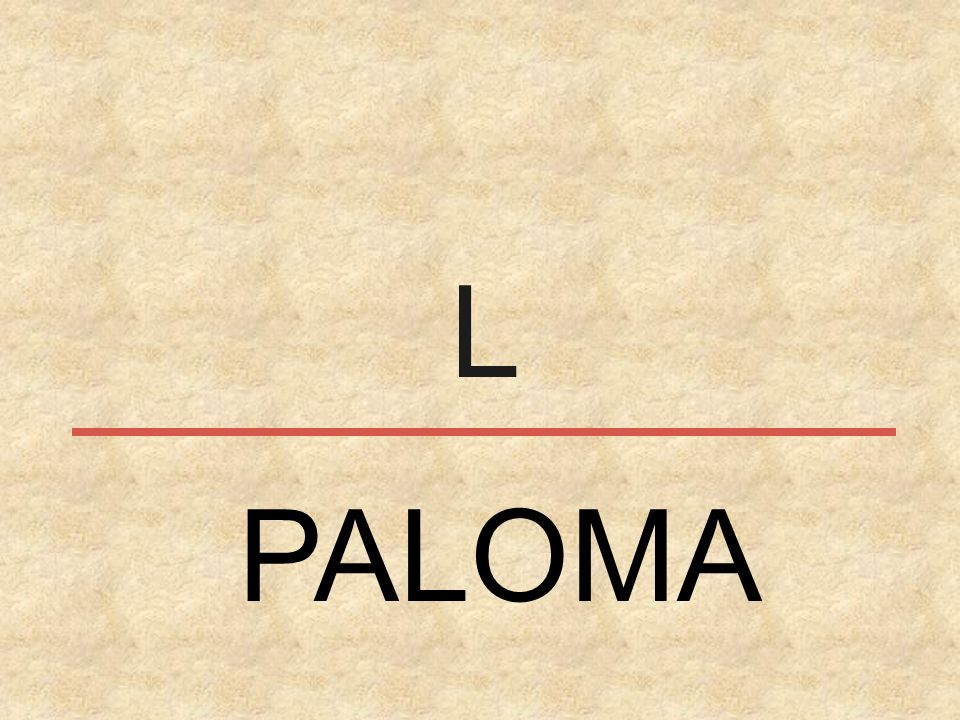 L PALOMA