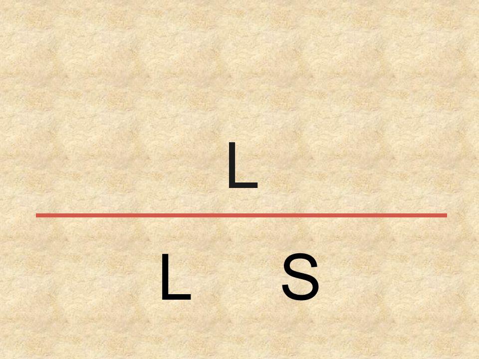 L L S