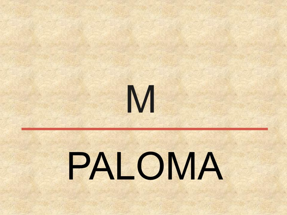M PALOMA