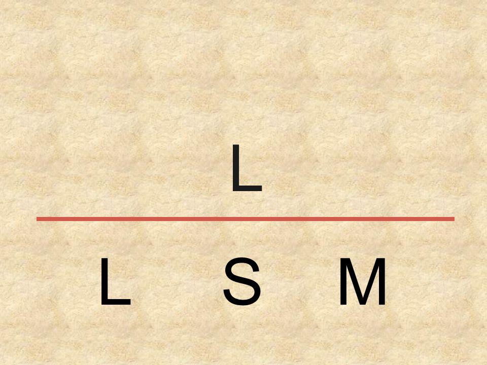 L L S M