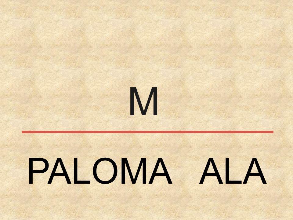 M PALOMA ALA