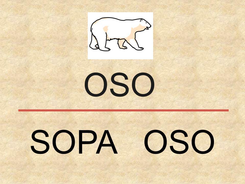 OSO SOPA OSO