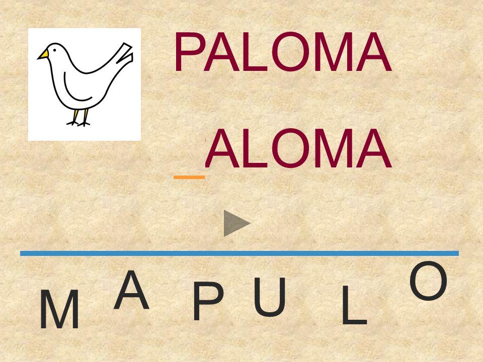 PALOMA PALOMA _ O A U P L M