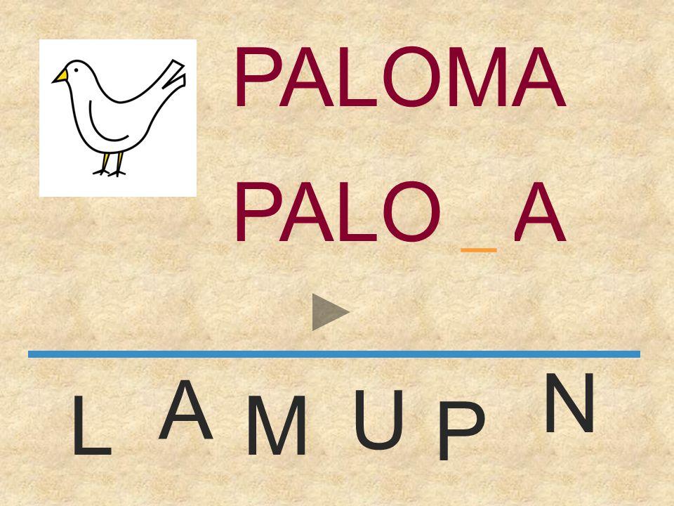 PALOMA PALOMA _ N A U L M P