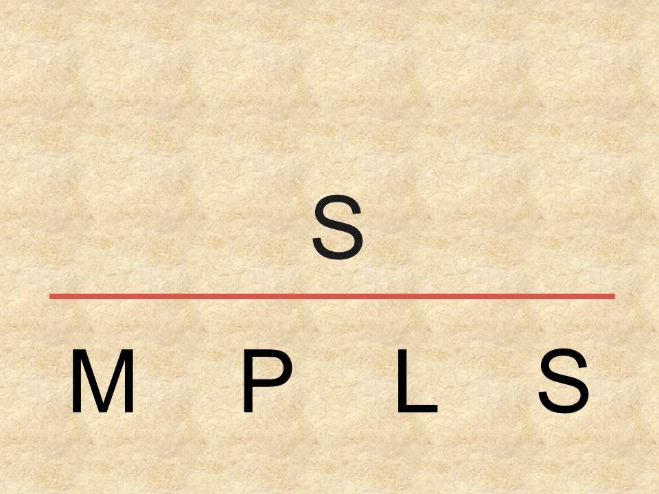 S M P L S