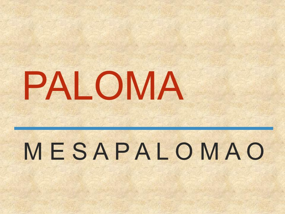 PALOMA M E S A P A L O M A O