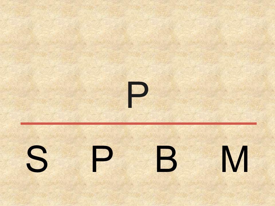 P S P B M