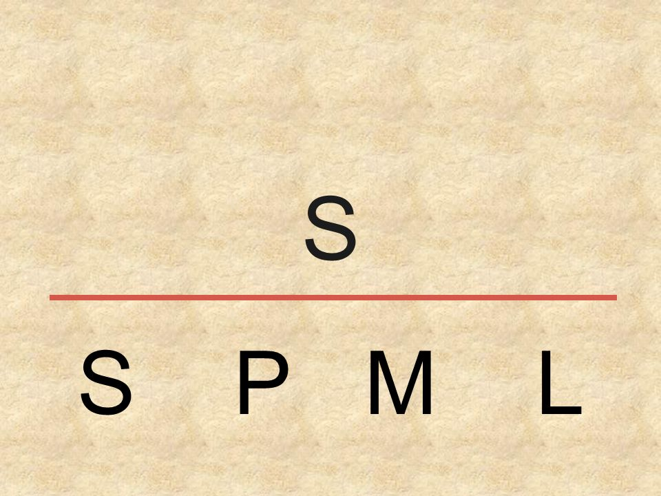 S S P M L