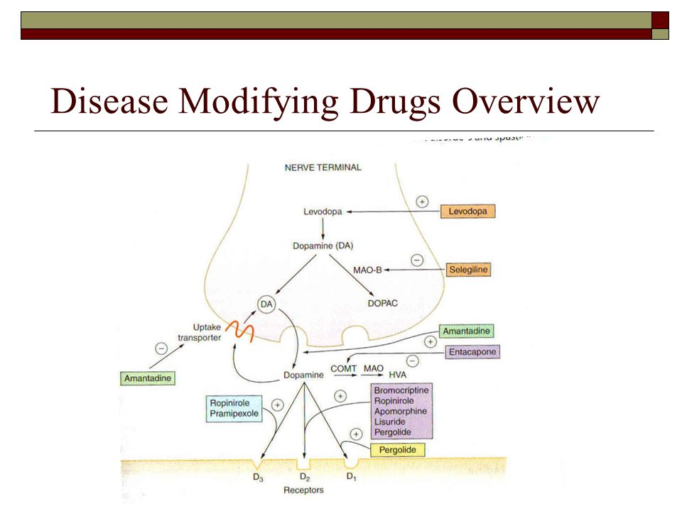 Kemadrin Drug Interactions