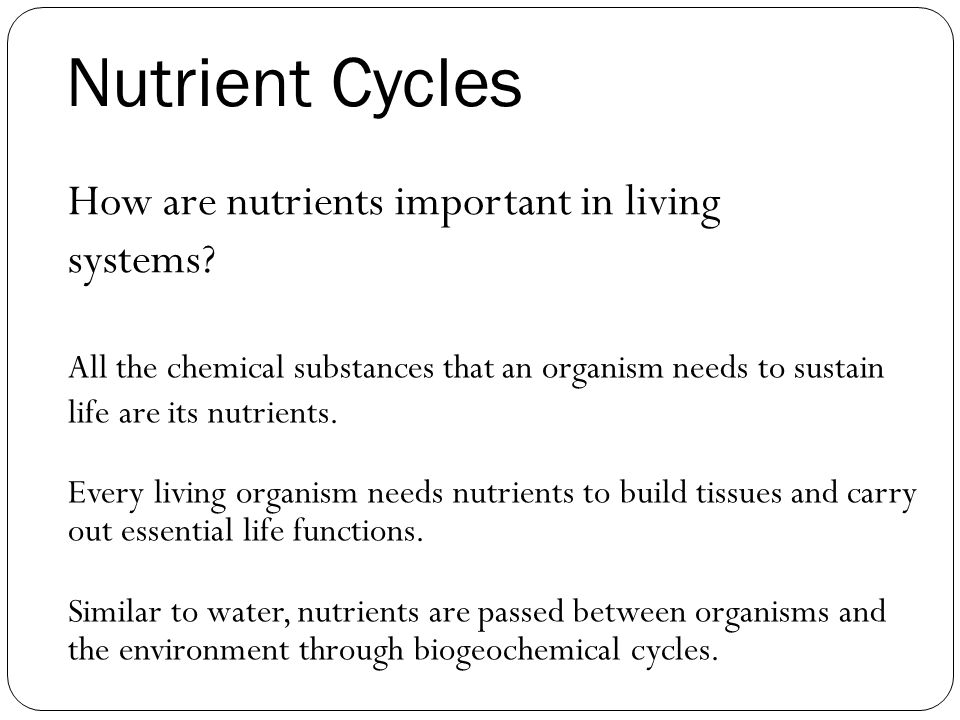 Nutrient Cycles How are nutrients important in living systems