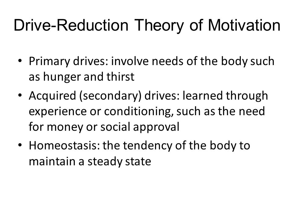 What are the Different Approaches to Motivation?