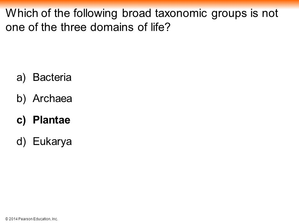 Which of the following broad taxonomic groups is not one of the three domains of life