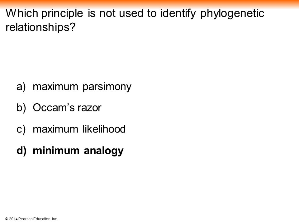 Which principle is not used to identify phylogenetic relationships