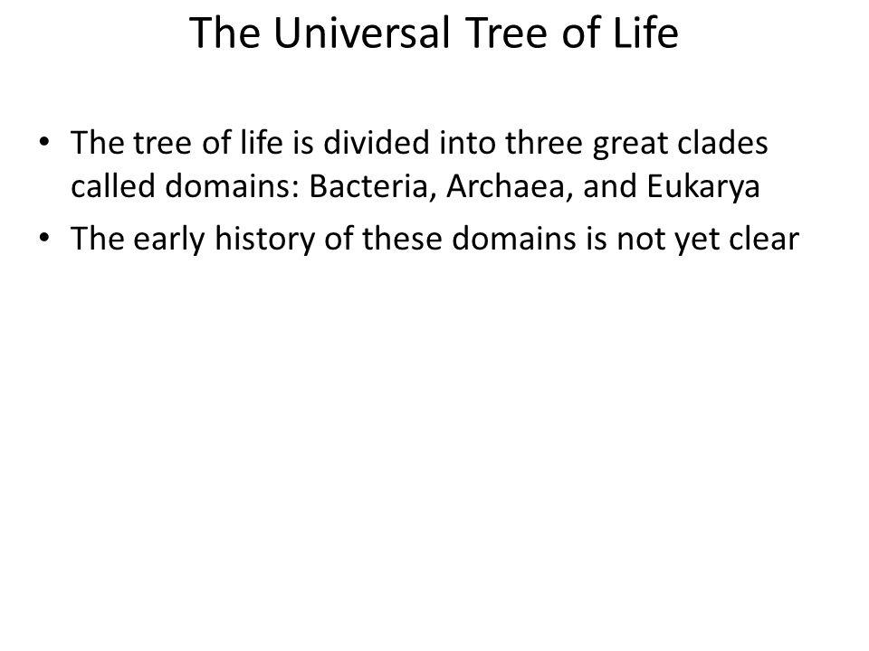 The Universal Tree of Life