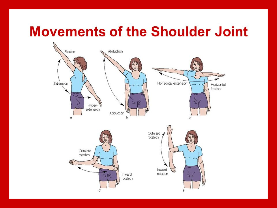 Charmant Anatomy Joint Movements Bilder - Menschliche Anatomie ...