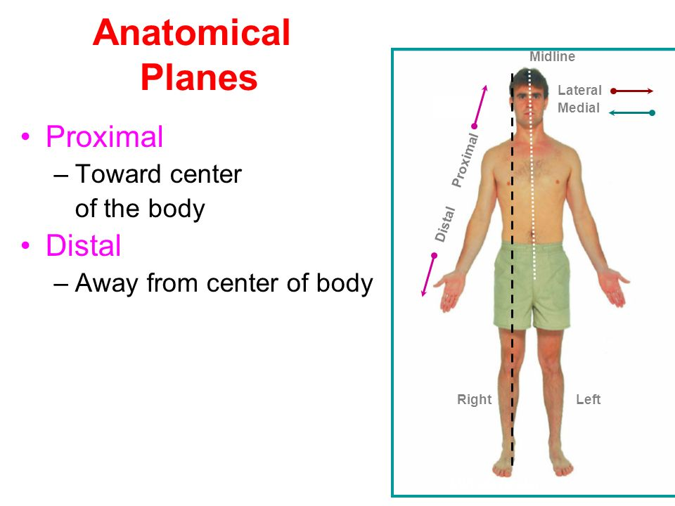 Anatomy of a plane