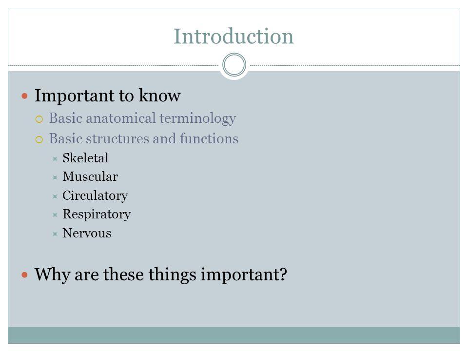 Schön Why Is Anatomy And Physiology Important Fotos - Menschliche ...