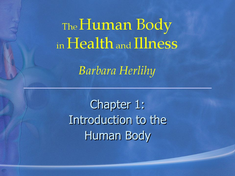 Chapter 1: Introduction to the Human Body - ppt video online download