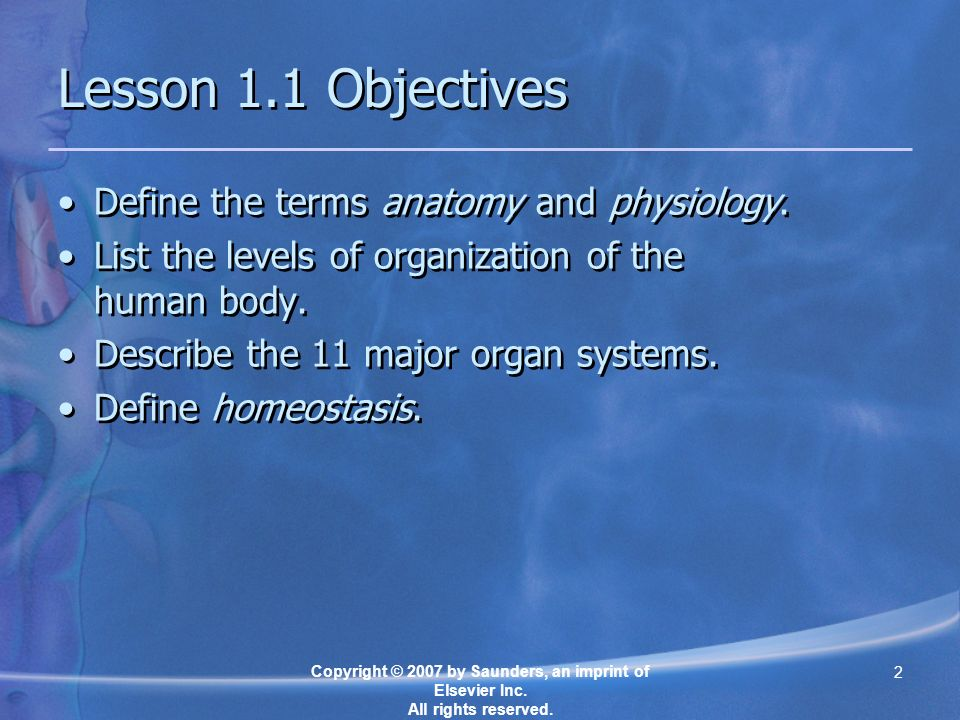Chapter 1 Introduction To The Human Body Ppt Video Online Download